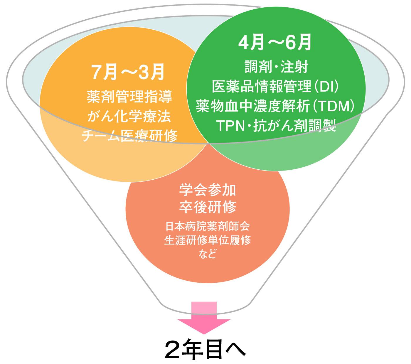 薬剤師新人教育スケジュール(1年目)~急性期病院での教育~